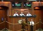 Ghostzapper Filly Sells for $720,000
