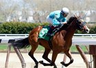 Lady Stardust First Winner for Union Rags in Debut