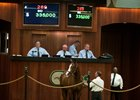 OBS Sale Opens on Strong Note