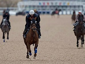 Woodbine Kicks Off Thoroughbred Season Apr. 9