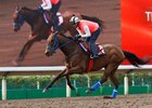 Mongolian Saturday in Tough at Sha Tin