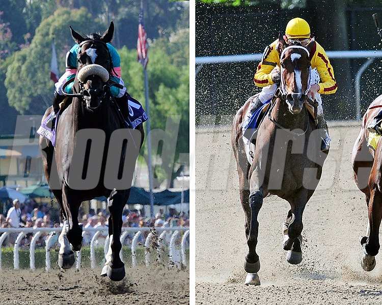 Zenyatta and Rachel Alexandra side by side created by Adam Spradling