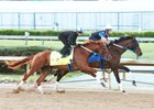 Gun Runner Validates Reasons for Partnership