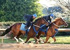 Untapable, Whitmore Breeze at Oaklawn