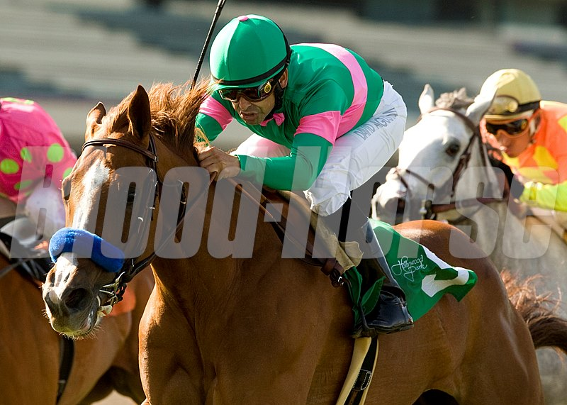 Cozi Rosie and jockey Mike Smith win the Grade III, $100,000 Senorita Stakes, Sunday, May 2, 2010 at Hollywood Park, Inglewood CA.