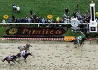 MJC: Preakness Set Handle, Attendance Records