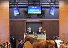 Friesan Fire Colt Brings $825,000 at F-T