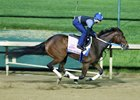 Asmussen Breezes Four Oaks Hopefuls
