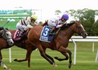 Unbeaten Lightstream Takes Soaring Softly