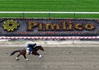 Nyquist Gallops Strongly at Pimlico