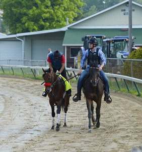 Nyquist Gets First Look at Churchill Downs