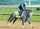 Creator Turns in Final Kentucky Derby Breeze