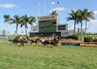 Total, Average Handle Up at Gulfstream Spring