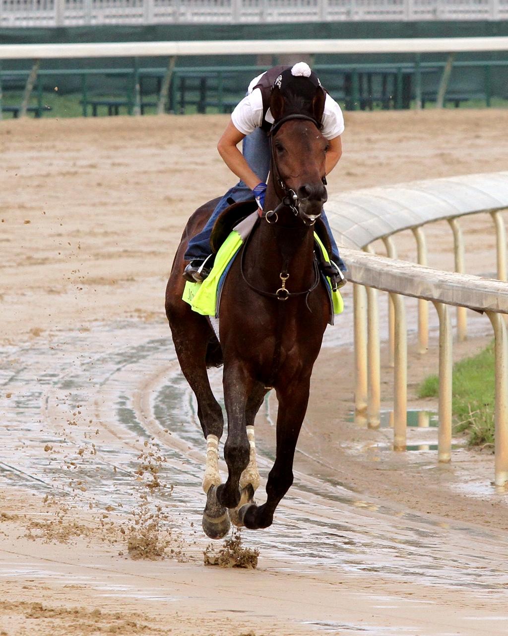 Kentucky Derby 2016: No horses scratch at deadline, the field is set