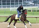 Nyquist Strong in First Churchill Gallop