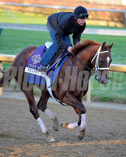 Trappe Shot Works and schooling with Breeders' Cup horses at Churchill Downs in Louisville, Ky. on Nov. 2, 2011