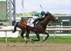 Abiding Star Gets All Clear for Preakness