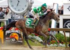 Exaggerator Turns the Tables, Wins Preakness