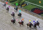 2016 Preakness Stakes Race Sequence