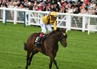 Stonestreet Thrilled by Lady Aurelia