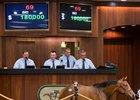 Stay Thirsty Filly Tops OBS June Sale Opener
