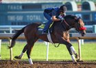 Nyquist Works Back at Santa Anita