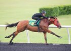 Seven Share Fastest OBS Eighth-Mile Work Time