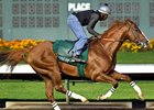 California Chrome Drills at Los Alamitos