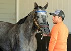 Styles Vary in Asmussen Belmont Stakes Duo