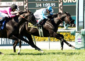 Midnight Storm Gets Shoemaker Mile Revenge