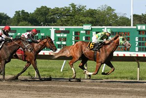 Donegal Moon Gets First Stakes Win in Pegasus