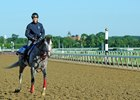Japanese Horses Have Made Belmont Impact
