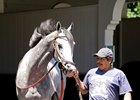 Cherry Wine Returns to Turf for Secretariat
