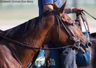 Beholder Works Toward Hirsch at Del Mar
