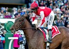 Birdatthewire Makes Gulfstream Return