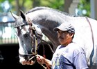 Cherry Wine Favored in Indiana Derby