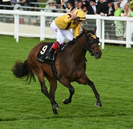 Lady Aurelia Blowout Winner of Queen Mary