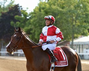 Songbird Drills Five Furlongs in 1:00 3/5
