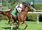 Unbeaten Ancient Secret Tries Woodbine