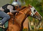 California Chrome Goes in Company at Los Al
