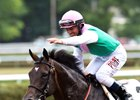 Flintshire Looking Strong for Sword Dancer