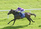 'Heaven' Gives O'Brien Fifth Irish Oaks Win