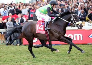 Outsider The Conglomerate Wins Durban July