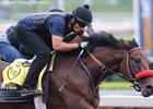 Nyquist Posts Another Santa Anita Breeze