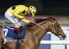 Postponed to Miss King George VI Stakes