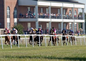 KY Downs to Open With Loaded All-Turf Card