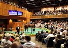 F-T Saratoga Sale Posts Modest Declines