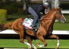 California Chrome Back to Work at Los Al