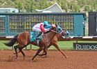 Trainer Fincher Dominates Ruidoso Card