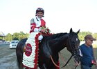 Songbird Works at Del Mar, Cotillion Next